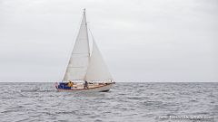 Feya Sailing Chesapeake Bay