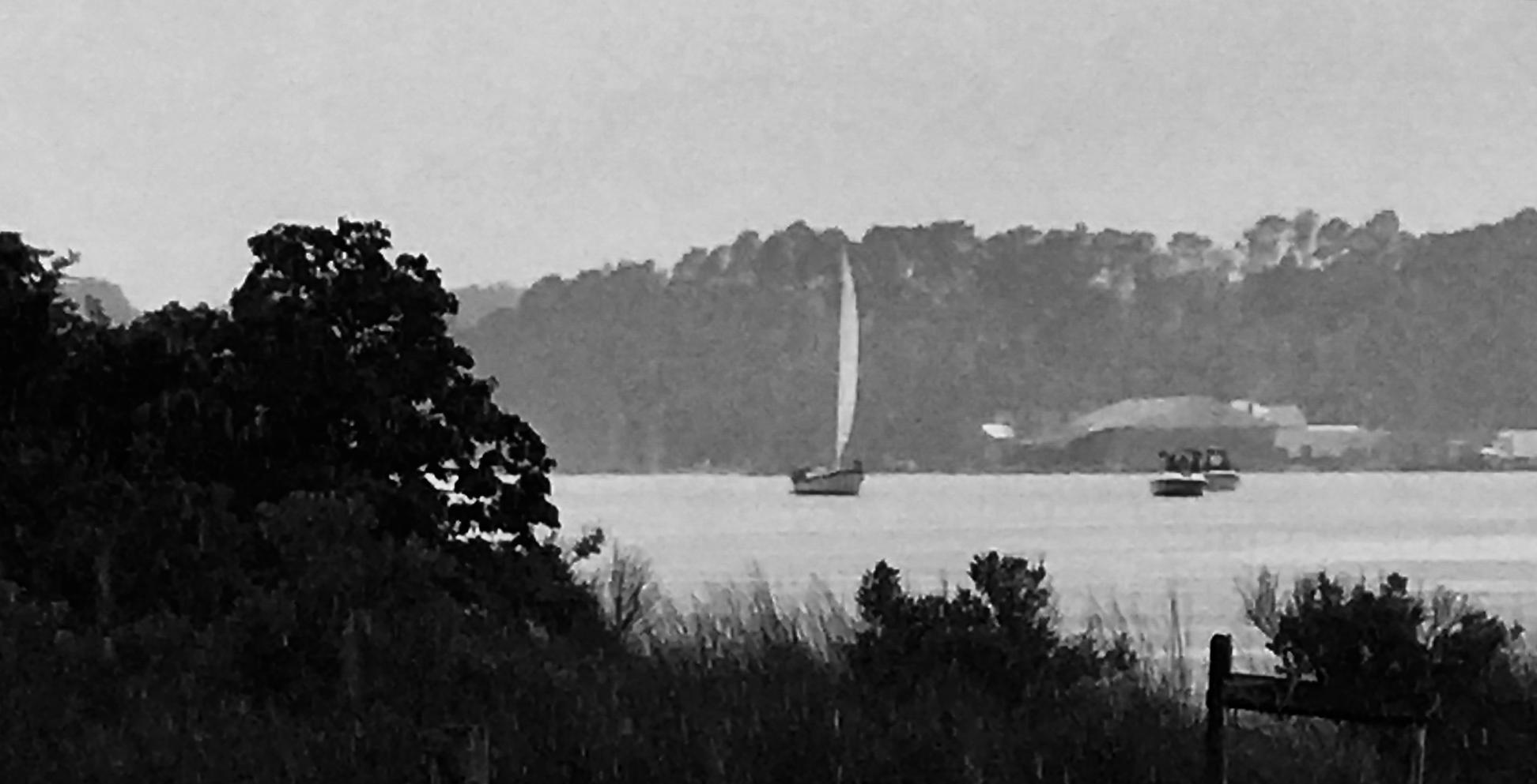 Freya Gwynn's Island