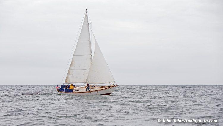 Feya Sailing Chesapeake Bay